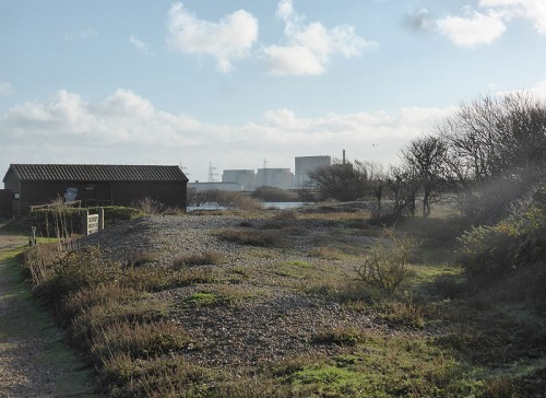 Christmas Hide at RSPB Dungeness