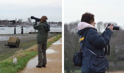 Birdwatching at Warsash