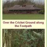 Ashford Cricket Ground