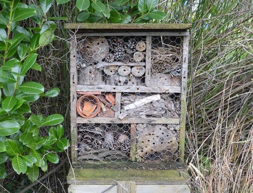 Garden Bug House