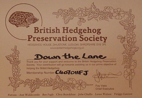 Down the Lane Hedgehog Preservation Member Certificate