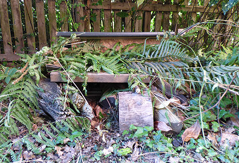 Large DIY Hedgehog House hidden in bushes