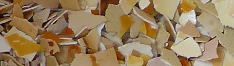 crushed egg shells