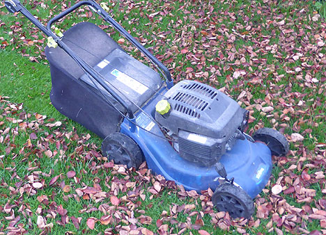 Collecting leaf mould in a Rotary Mower