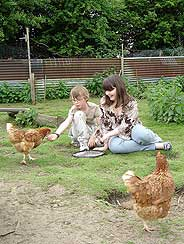 chickens as pets for children