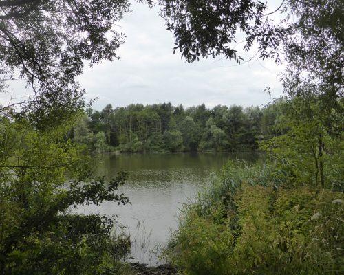 Eco Lake Conningbrook
