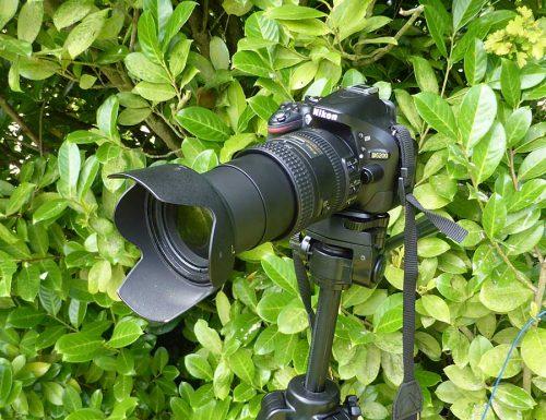 Nikon D5200 with Nikon 18x200mm Lens