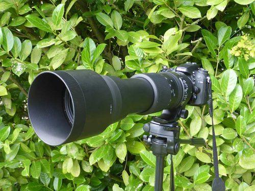 Nikon D7200 with Sigma 150x600mm Lens