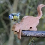 Blue Tit on top of feeders