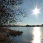 Conningbrook main lake in Winter