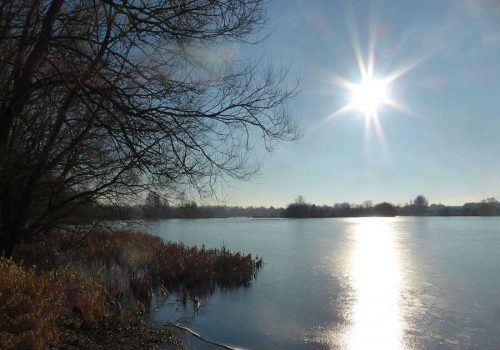 Conningbrook main lake in Winter
